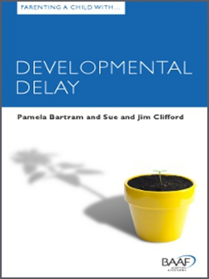 Parenting a child developmental delay cover