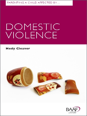 Parenting a child domestic violence cover