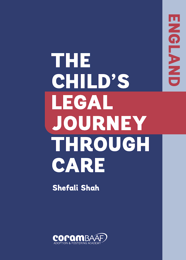 The Child's Legal Journey through Care